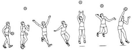 Podacha voleibole