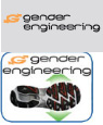 Gender engineering