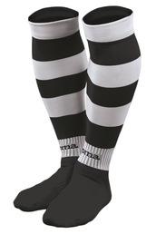 Zebra 101